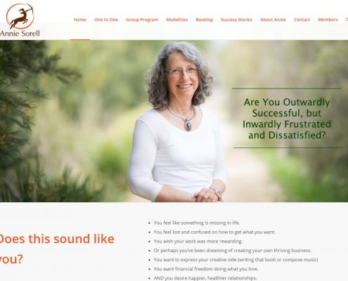 Website Design - Annie Sorell