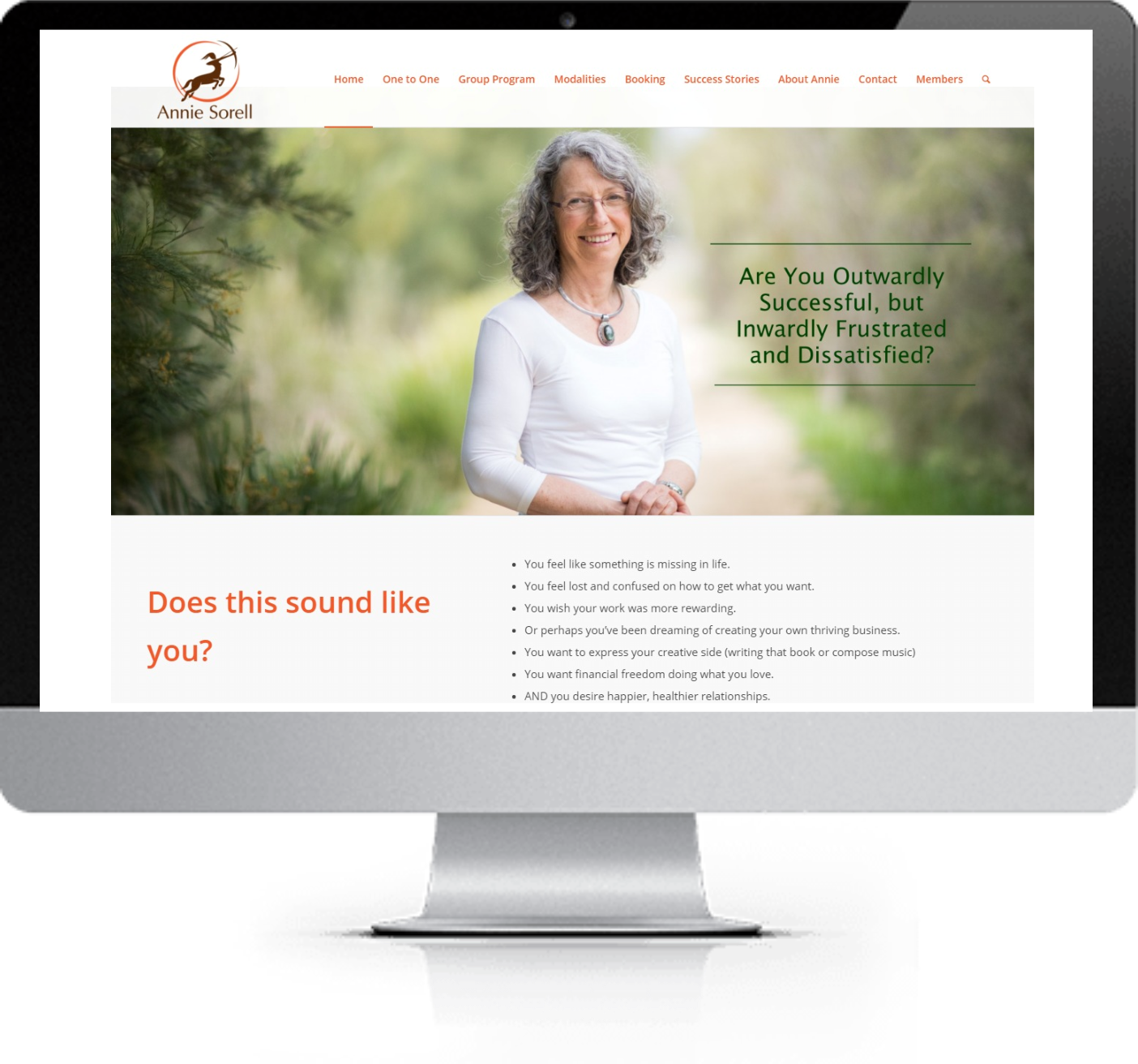 Website Redesign - Annie Sorell - After