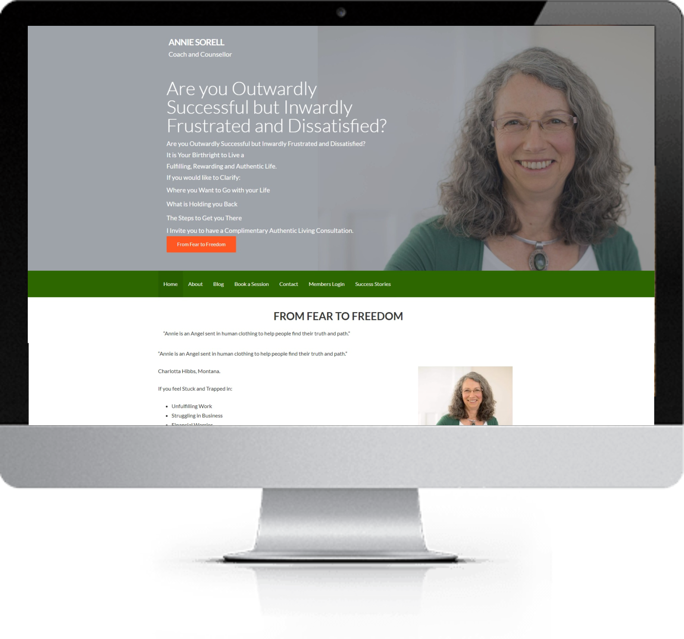 Website Redesign - Annie Sorell - Before