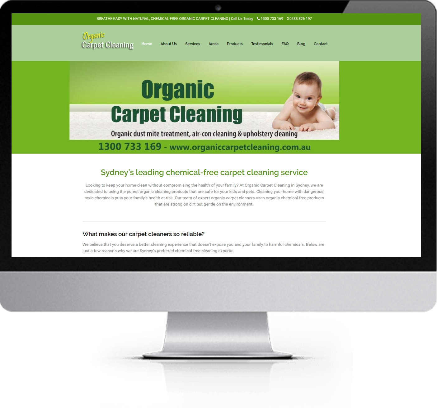 Website Redesign - Organic Carpet Cleaning - Before