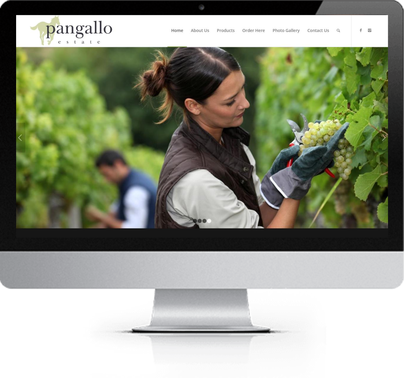 Website Redesign - Pangallo Estate - After