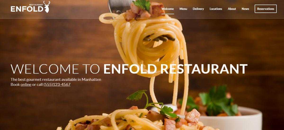WordPress Enfold Theme